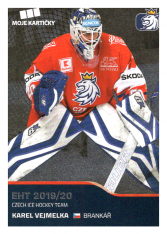 2019-20 Czech Ice Hockey Team  39 Karel Vejmelka