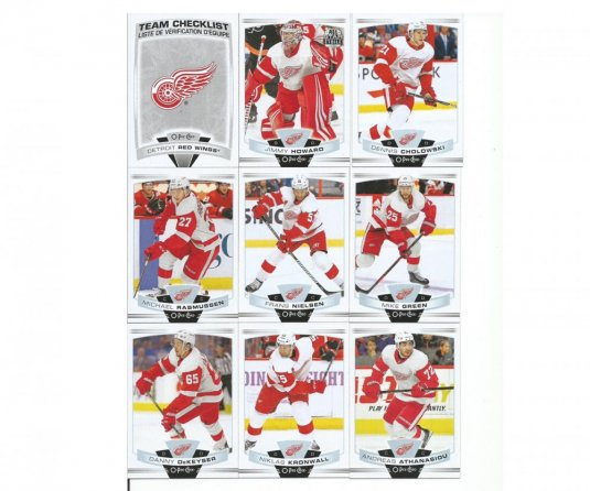 2019-2020 Upper Deck O-Pee-Chee Týmový set Detroit Red Wings