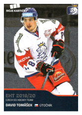 2019-20 Czech Ice Hockey Team  35 David Tomášek