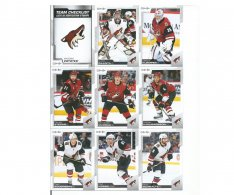 2020-21 Upper Deck O-Pee-Chee Teamový Set Arizona Coyotes